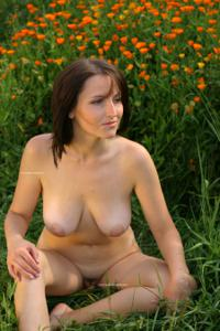 Наташа любит полевые цветы - фото #19