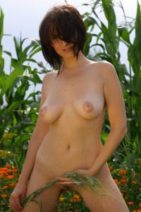 Наташа любит полевые цветы - фото #36