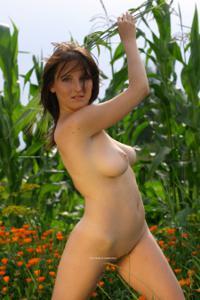 Наташа любит полевые цветы - фото #37