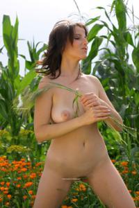 Наташа любит полевые цветы