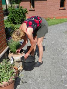 Домохозяйка в огороде без трусиков к короткой юбке - фото #1