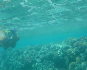 Интимные фоточки зрелой женщины с моря - фото #33